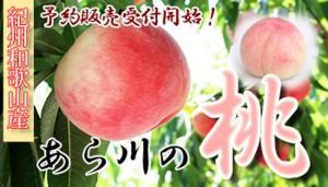 あわ川の桃バナー(350×200)